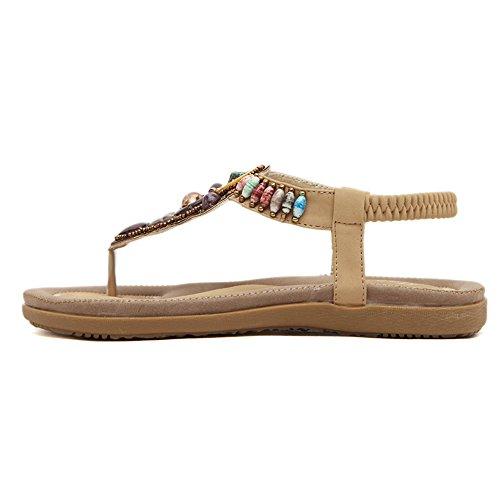 De las mujeres chancletas sandalias De los estilos moldeados de Bohemia albaricoque