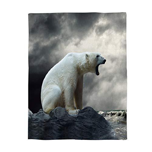 wanxinfu Cozy Warm Lightweight Microfiber Throw Blankets,Soft Reversible Flannel Fleece Bed Throw Polar Bear Roar Reef Cloudy,Luxury Fuzzy Blankets for Adults/Girls/Kids/Boys/Dogs/Couch,49''W x 59''L