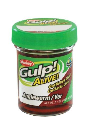 (Gulp! Alive! Angle Worm)