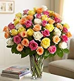 Ultimate Elegance Premium Long Stem Assorted Roses - Four Dozen Assorted Roses