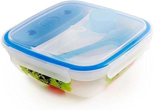 Presupuesto lata Salad to Go – Fiambrera 1,5L con acumulador de frío, cubiertos y decoración: Amazon.es: Hogar