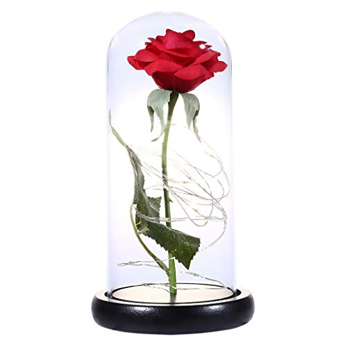 UPDD LED Rose Flower Lights, Romantic Immortal Flower Micro Landscape Rose, Simulation Glass Shade Llight for Birthday Anniversary Engagement -