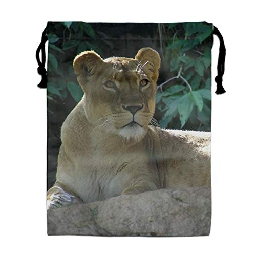 Animal Lion Cats Gym Sports Dance Bag Durable Drawstring Backpack