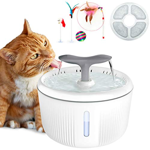 🥇 Productos para mascotas con encantada