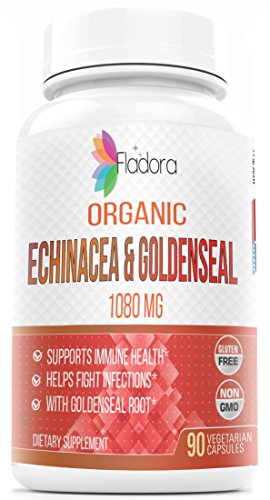 Organic Echinacea with Organic Goldenseal - 1080mg - 90 Vegetarian Capsules - Supports Healthy Immune Function and Overall Well-being - by ()