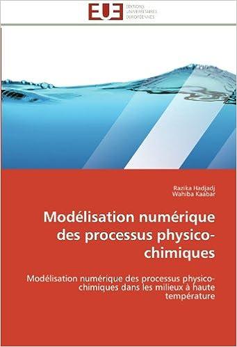 Modélisation numérique des processus physico-chimiques: Modélisation numérique des processus physico-chimiques dans les milieux à haute température (Omn.Univ.Europ.)