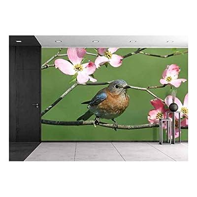 Premium Product, Pretty Craft, Female Eastern Bluebird (Sialia Sialis) with Pink Dogwood Flowers