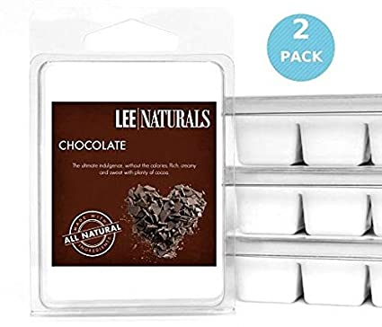 Lee Naturals Classic Collection - (2 Pack) ANGEL Premium All Natural 6-Piece Soy Wax Melts. Hand Poured Naturally Strong Scented Soy Wax Candle Cubes