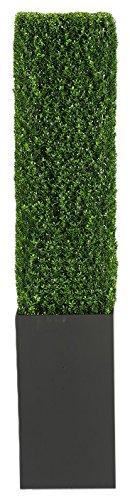 D & W Silks 316302 7' Boxwood Column in Wooden Planter, 7' High, Black/Green by D & W Silks (Image #1)