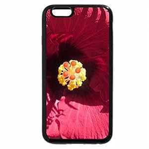 iPhone 6S Plus Case, iPhone 6 Plus Case, heart of hibiscus