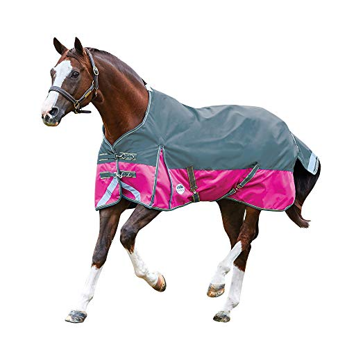 (Weatherbeeta Comfitec Plus Lite Dynamic Standard Neck Turnout Rug (5 ft 6) (Sea Green/Pink/Yellow))