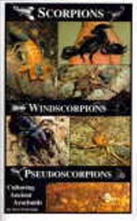 Scorpions, Windscorpions, Pseudoscorpions: Culturing Ancient Arachnids