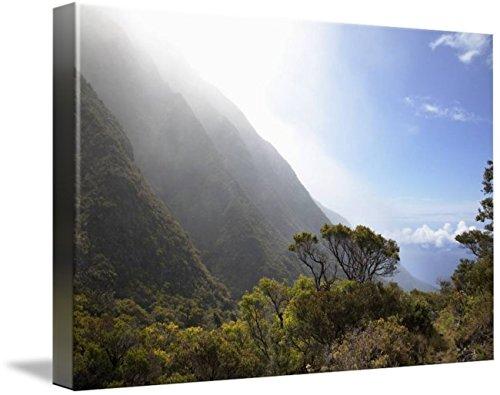 Wall Art Print entitled Hawaii, Maui, Lush Foliage In Kaupo Gap by Design Pics | 48 x - Gap Kaupo