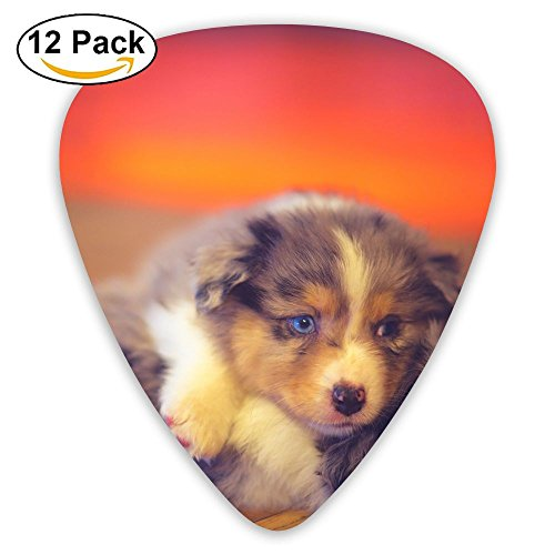 12-pack Fashion Classic Electric Guitar Picks Plectrums Cute Dogs Puppy Play Game Instrument Standard Bass Guitarist ()