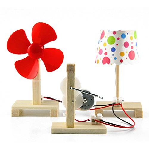 Delinx STEM Building Toy DIY Project Hand Crank Power Generator Table lamp & fan Model Science Experiments Kit for Kids Age 7+ (Science Experiments Light)