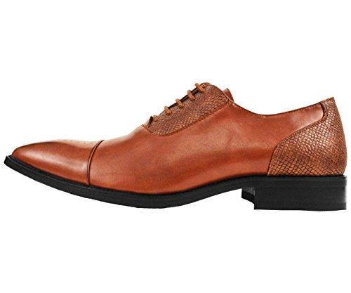 Amali Mens Cognac Marron Lisse Cap Toe Robe Oxford Chaussure Avec Lézard Exotique Détail Imprimé: Style Tex-215