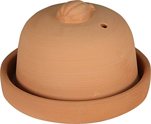 Eurita by Reston Lloyd Terra Cotta Garlic Roaster, - Baking Cotta Terra