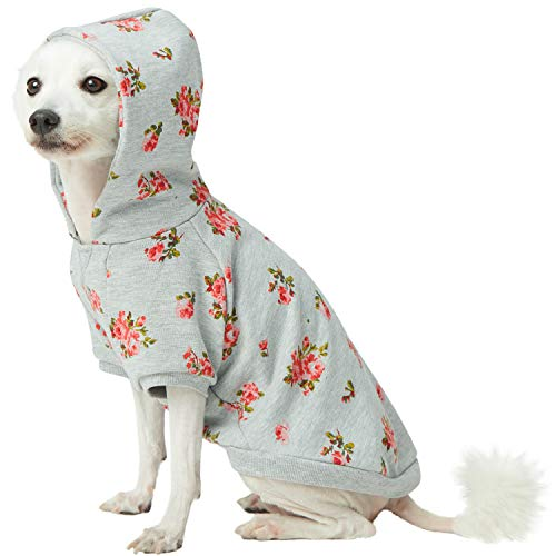 (Blueberry Pet 2019 New Spring Scent Inspired Rose Flower Pullover Dog Hooded Sweatshirt in Stylish Grey, Back Length 14