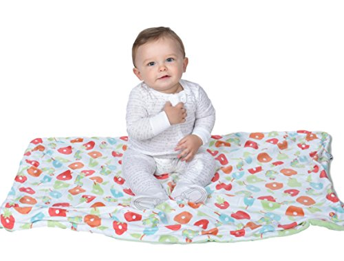Hungry Caterpillar Baby Blanket, Plush and Large Baby Blanket, Toddler Crib Blanket, 2 Ply Blanket, Stroller Cover, The Very Hungry Caterpillar, 30'' x 40'' ,Green Fruit , Neutral (Boys Bear Angel Blanket Plush)