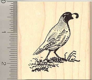 (Quail Rubber Stamp - Wood Mounted H9013)