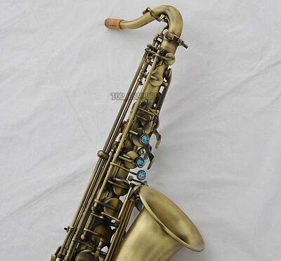 FidgetGear Professional Antique C Melody Saxophone for sale  Delivered anywhere in USA
