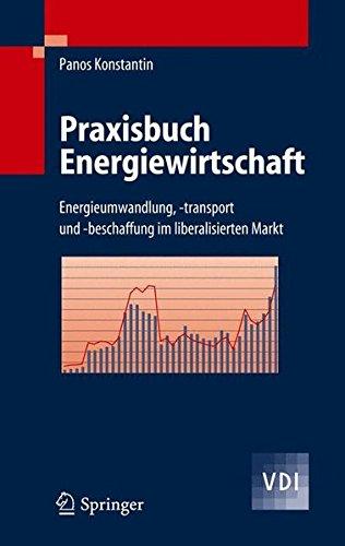 Praxisbuch Energiewirtschaft: Energieumwandlung, -transport und -beschaffung im liberalisierten Markt (VDI-Buch)