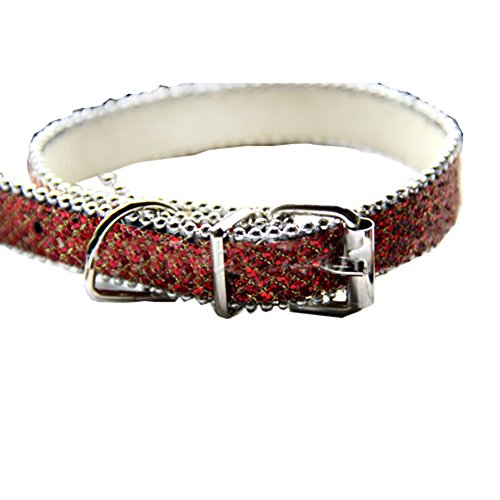 Bling Birthstone Studded Collar Medium