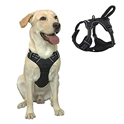 ANWA Dog Harness Adjustable Pet Vest Soft and Comfortable for Large Size No Pull Harness