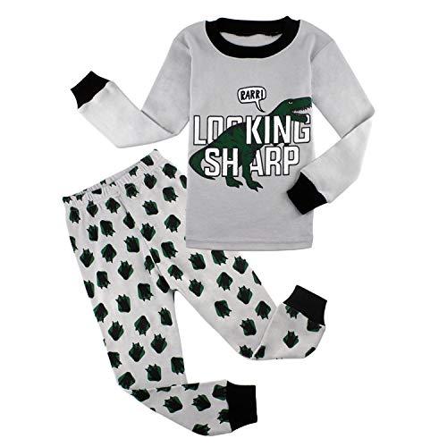 AmberEft Pajamas for Boys Dinosaur Clothes Kids PJs Sets Toddler Long Sleeve Sleepwear Size -