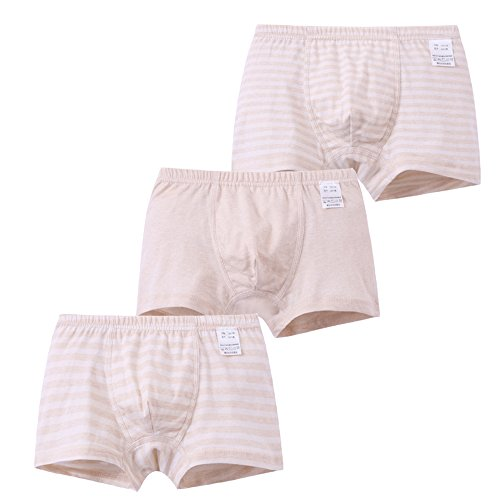 Setaria Viridis 3Pack Baby Boys Underwear Organic Cotton Toddler Undies Kids Boxer Briefs Panties Underpants