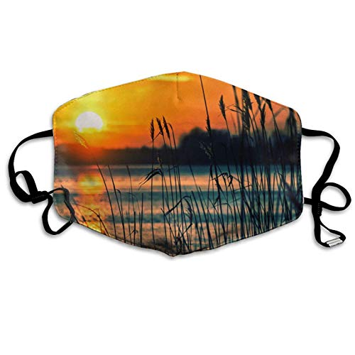 Lake in The Sunset Mouth Masks with Nose Bridge Wire Dust-Proof Anti-Bacterial Reusable Masks-Suitable for Men and Women Masks