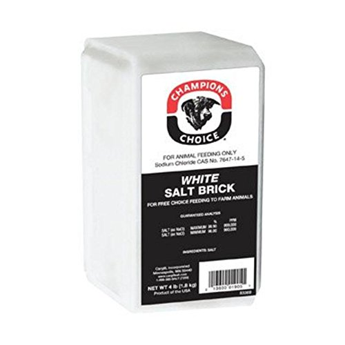 cargill-salt-110005051-4-lb-champions-choice-white-salt-brick-livestock-stall-supplies