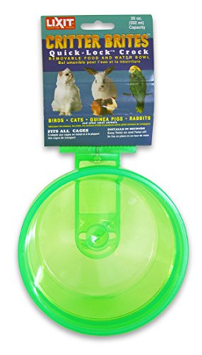Lixit Corporation SLX0520 Critter Brites Small Animal Quick Lock Crock, 20-Ounce, Colors Vary