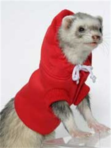 Marshall Ferret Sweatshirt, Colors Vary