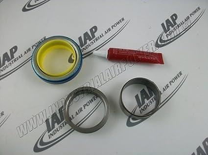 2250049 - 258 sello Kit - diseñado para uso con sullair compresores de aire: Amazon.es: Amazon.es