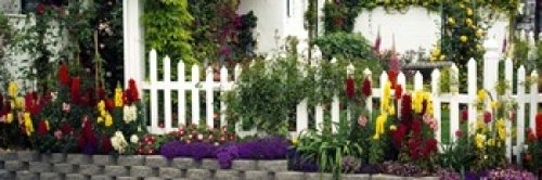 Posterazzi Flowers and Picket Fence in a Garden La Jolla San Diego California USA Poster Print, (36 x 12)