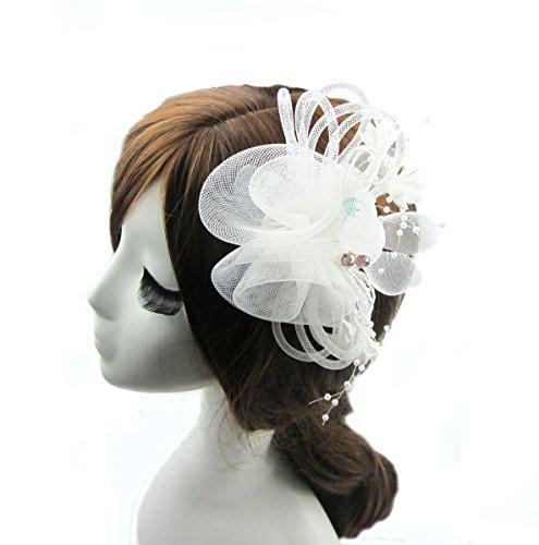 Fen Fun Net Chiffon Crystal beads Fascinator Headwear Flower Corsage Hair Clip Pin Brooch For Women Wedding Party (Church Lady Costume)