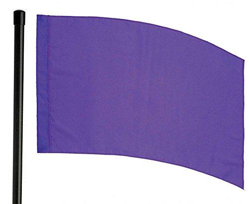 Director's Showcase DSI 6 Foot Black Flag Pole and Color Guard Flag Bundle (Purple)