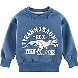 Popshion Boys Dinosaur Sweatshirts Toddler Boy Long