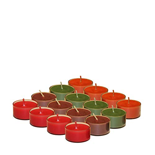 Cinnamon Tealight Candles - KRIXOT Scented Set of 48 Soy Wax Tealights in 4 Assorted Fragrances | Pumpkin Spice, Fall Leaves, Cinnamon Sticks and Rhubarb Raspberry | Candles for Home Decor | Burn Time Upto 4 Hrs