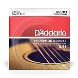 D'Addario EJ39 12-String Phosphor Bronze Acoustic