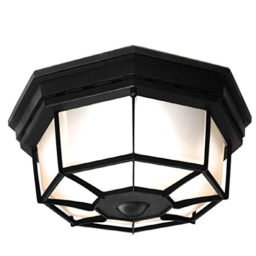 Motion Ceiling Light Outdoor in Florida - 4