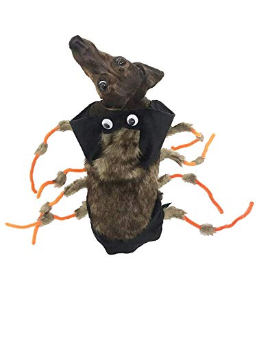 Midlee Scary Spider Dog Costume (Small) ()