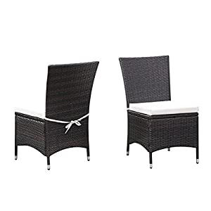 Portfolio Aldrich Brown Indoor/Outdoor 2-piece Armless Dining Chair Set