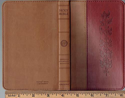 ESV - English Standard Version - TruTone series tan/brown Compact Thinline Edition Bible