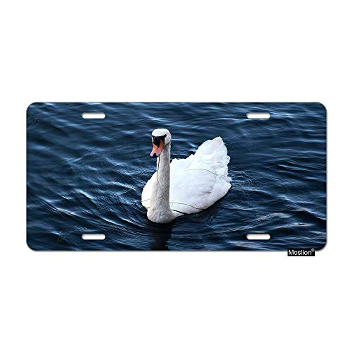 (Moslion Duck License Plate Farm Animal White Duck On Blue River Lake Water Car Tags Aluminum Metal Custom License Plate Cover 6x12 Inch for Truck SUV)