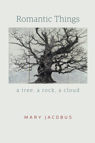 Romantic Things: A Tree, a Rock, a Cloud pdf