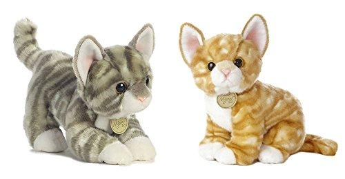 Orange Tabby Kittens For Sale Only 3 Left At 60