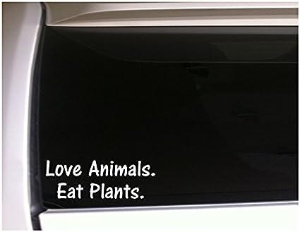 Eating Animals Is Weird Sticker Vinyl Decal Car Laptop Wall Vegan Stickers