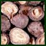 Mushroom Petite Shiitake - 5 Lb Unit